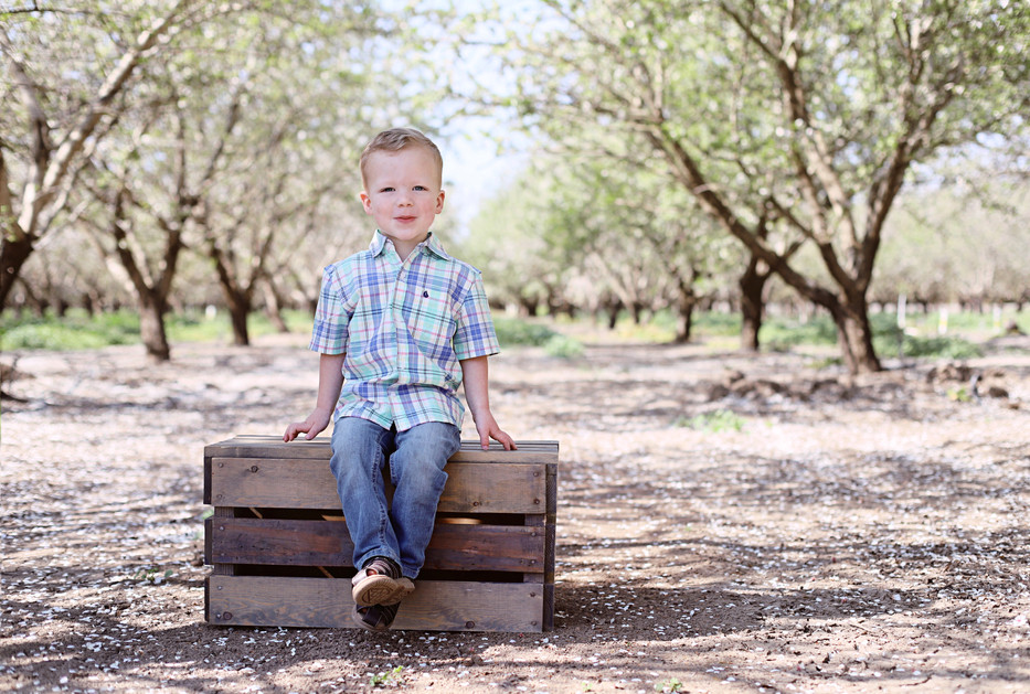 2 year old in almond orchards
