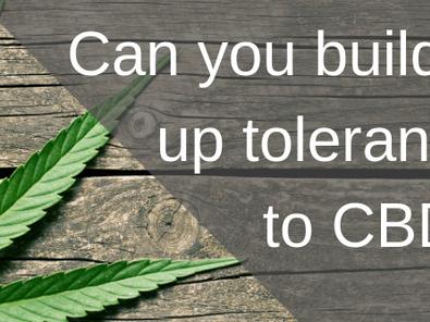Can You Build a Tolerance to CBD?