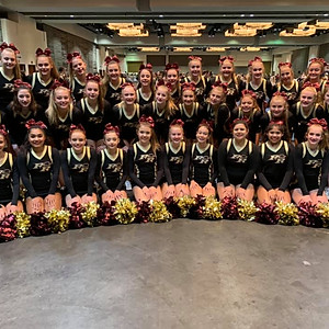 Rouse Cheer Team 2019-2020