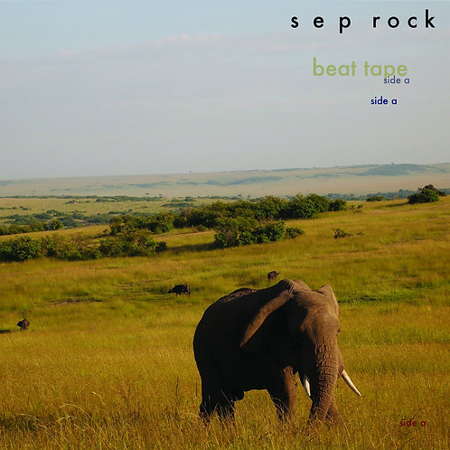Seprock ‎– Beat Tape Sides A & B LP