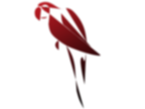 Liveparrot Logo Rostkappenpapagei Blog