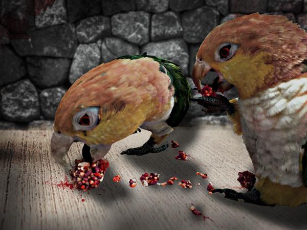 DIY-Toys Papageienspielzeug selber basteln Foraging-Toys Liveparrot Rostkappenpapagei gruselig Gehirn Halloween
