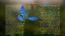 Colossians_3_1_10