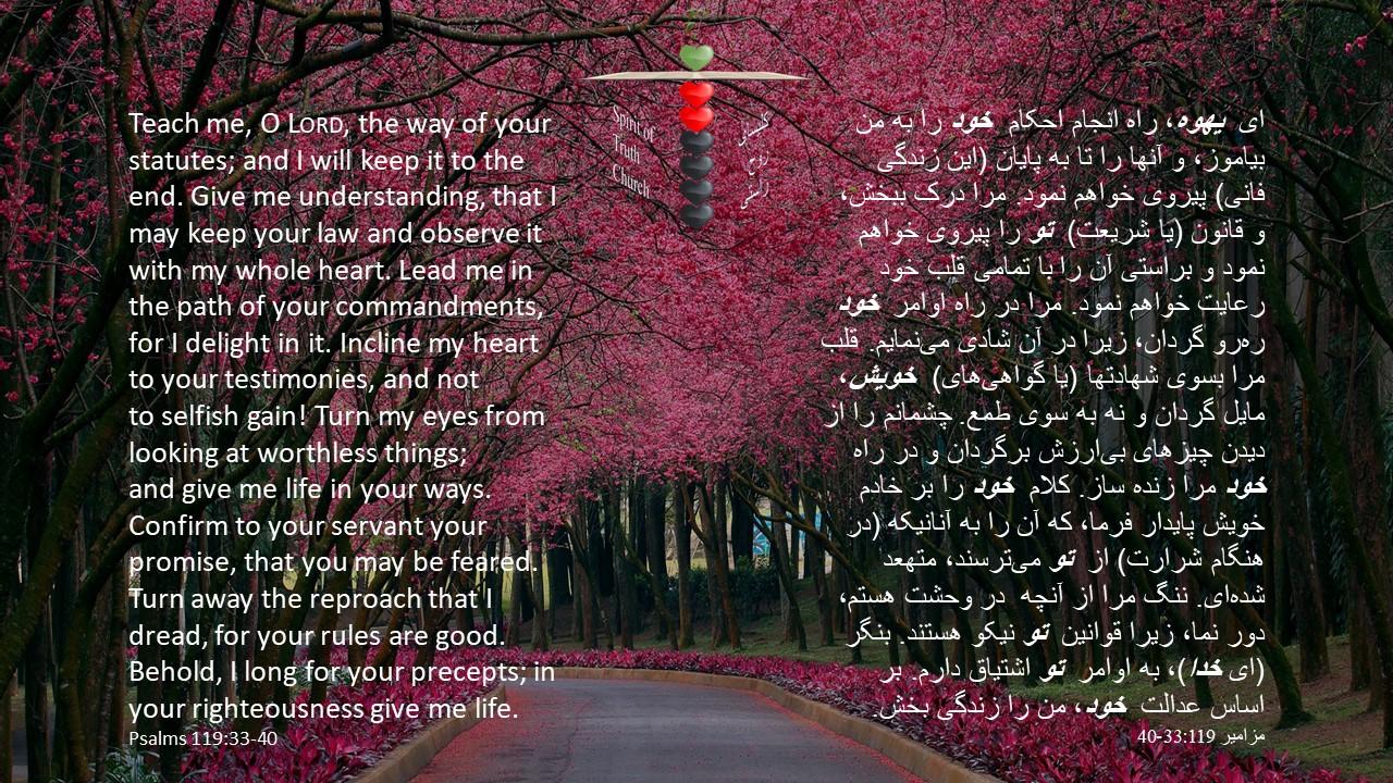 Psalms_119_33_40