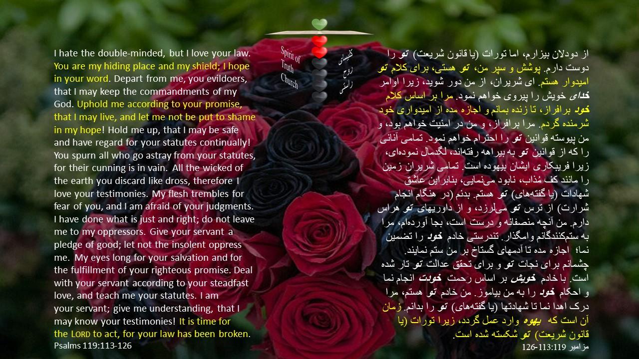 Psalms_119_113_126