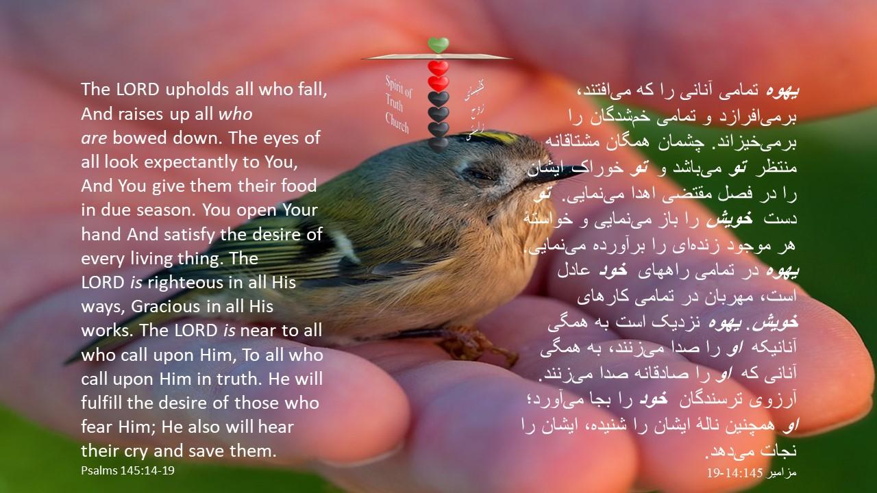 Psalms_145_14_19