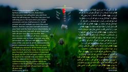 Deutronomy_30_4_10
