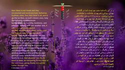 Colossians_3_11_17