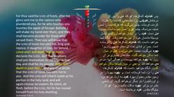Zechariah_2_8_13