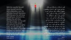 Psalms_18_25_29