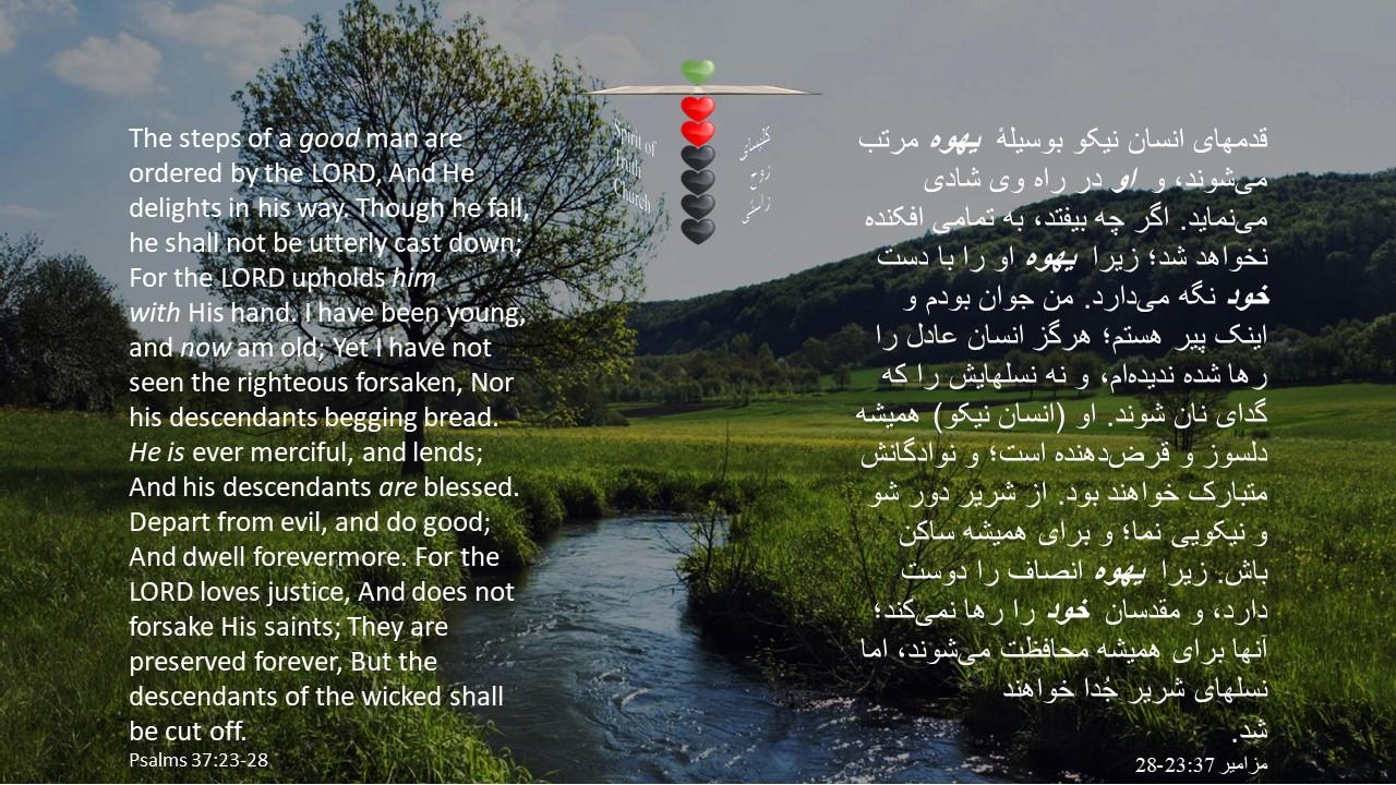 Psalms_37_23_28