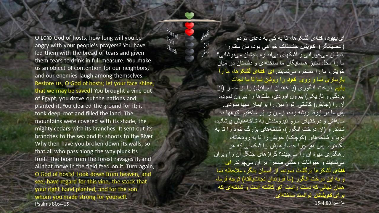 Psalms_80_4_15
