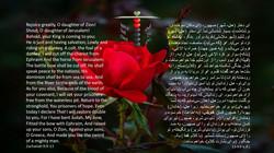 Zachariah_9_9_13