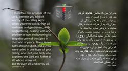 Ephesians_4_1_6