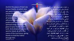 Colossians_3_15_17