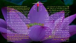 Psalms_116_1_13