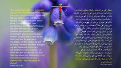 Psalms_119_73_80