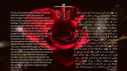 Psalms_94_3_15