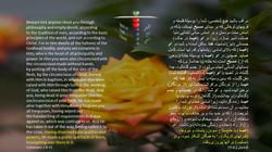 Colossians_2_8_15