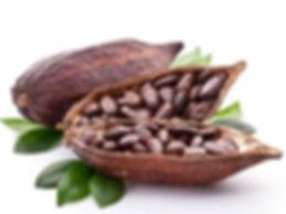 Ziarno kakaowca.jpg