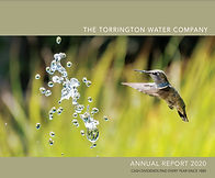 2021-Annual Report Cover.jpg