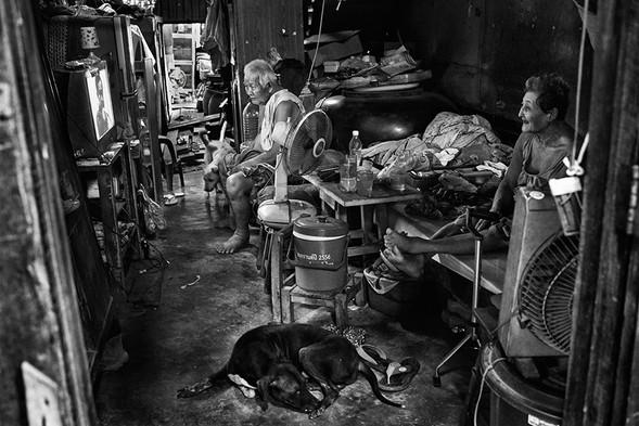 Retirement, Khlong 6 Wa, Bangkok