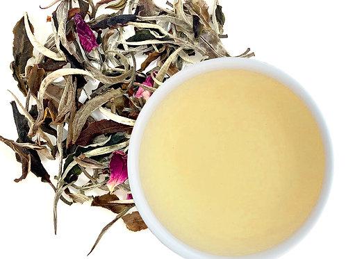 Gushu White Tea 8g./ ชาขาวจากยอดใบชาป่า ต้นชาทวด 200 ปี