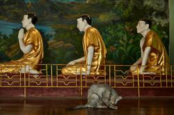 Kanjana Chaiwatanachai Image Works_Yangon_2014.01.12_102w.jpg