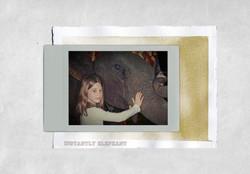 Instantly_Elephant.jpg