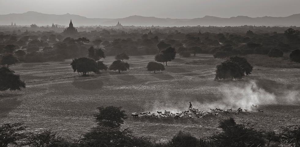 Homeward, Bagan, Myanmar