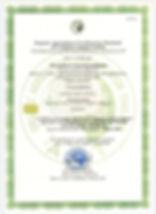 Organic TEAorganique_SpecialtyStory_ACTc