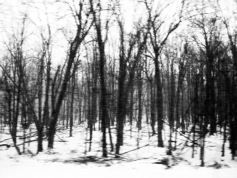 Snowy Pennsylvania, USA