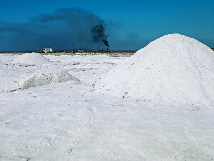 Salt Farm, Yinchuan