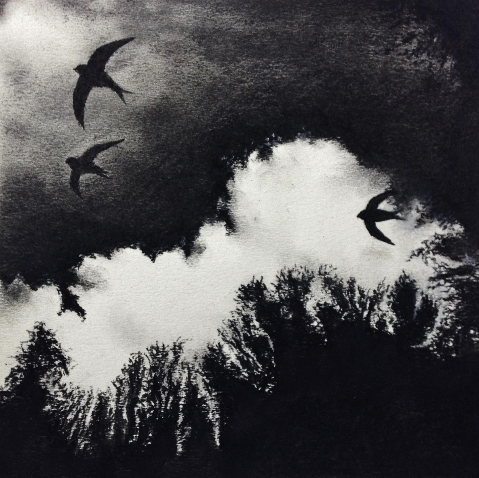 Black Spitfires