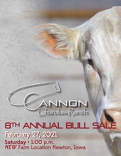 Cannon Charolais Bull Sale