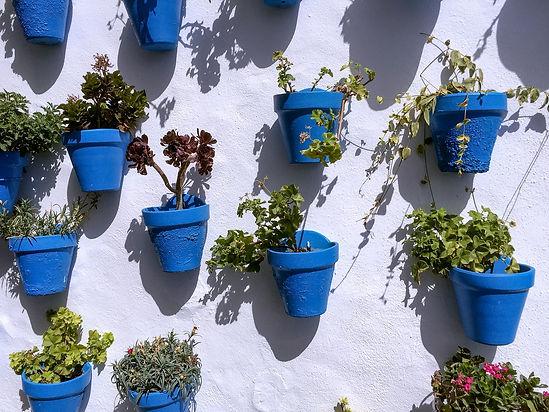 pots-1680026_1920.jpg