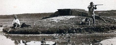 chasse baie de somme hutte hutteau gabion visite guidée sortie nature découverte chasseur guide picardie nord pas de calais