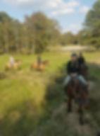enterrement vie jeune fille picardie baie de somme amiens traversée phoques activité originale équitation