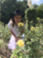 Rose pic 1.JPG