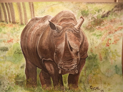 """Rhino At Rest"""