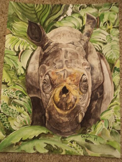"""Ronnie Rhino"""