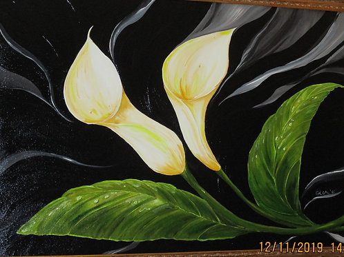 """Mountain Grove Lillies"""