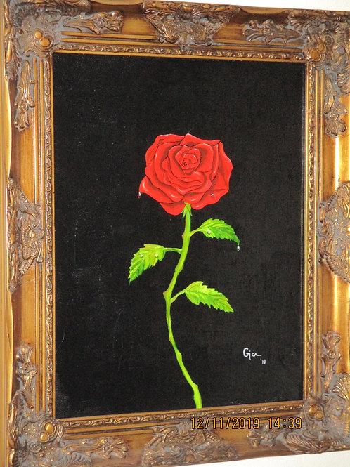 """""""Joseph's Rose"""""""