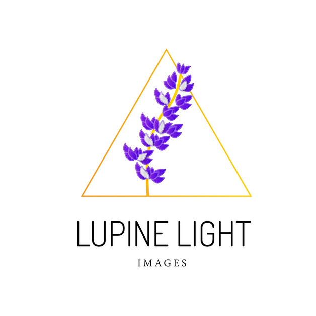 Lupine Light Images
