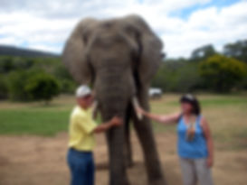Image of Photographer Laura Dooley of Lupine Light Images, visit with an elephant in Lesotho