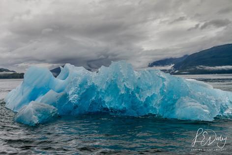 Iceberg Blues