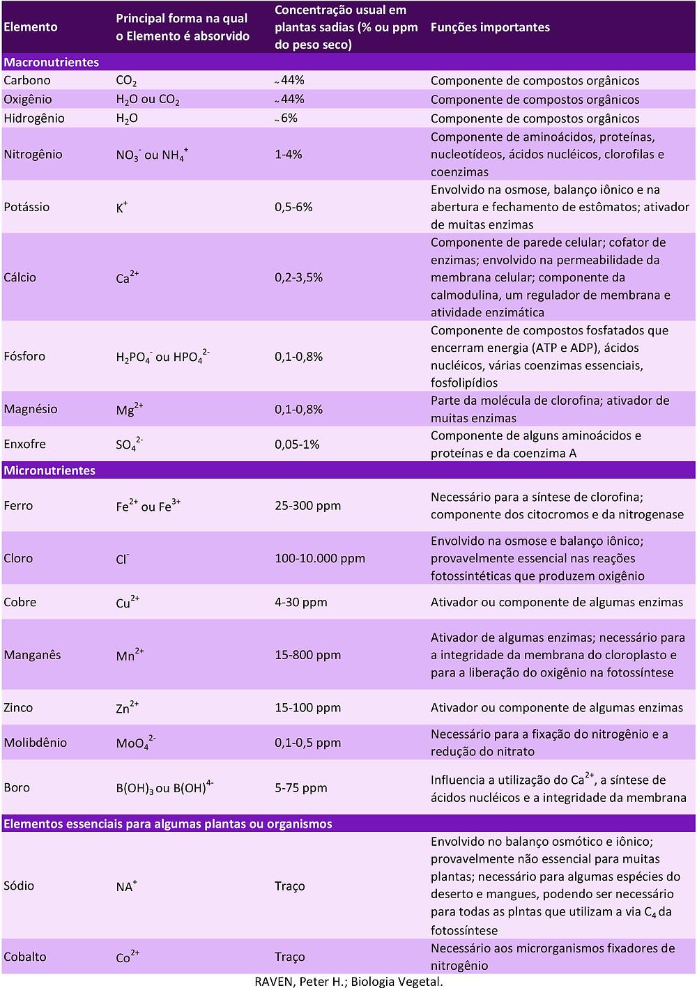 Canal CS Grow - Nutrientes e fertilizantes - Resumo das funções dos nutrientes inorgânicos nas plantas