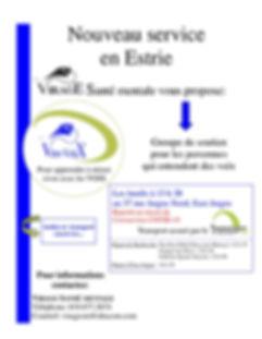 affiche GEV (janvier 2020)1.jpg