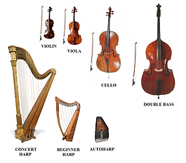 Orchestra Family Graphic.png