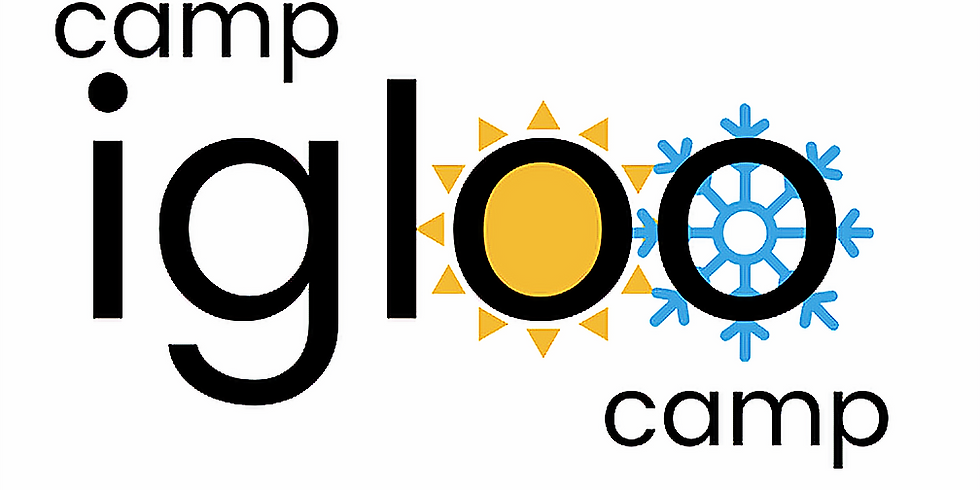 Igloo STEAM Summer Camp (Internal)